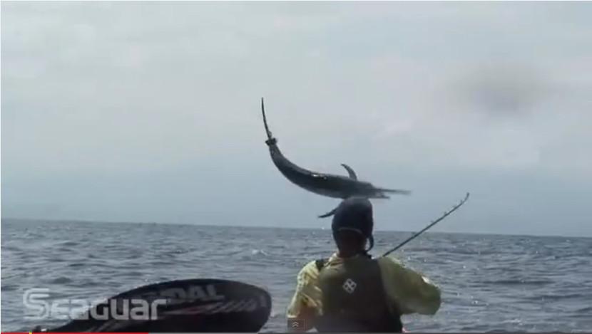 pesca marlin desde un kayak