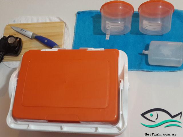 Kit para carnada de pejerrey