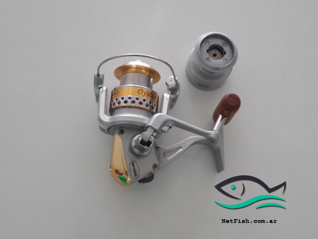 Reel Bamboo Oyster 100
